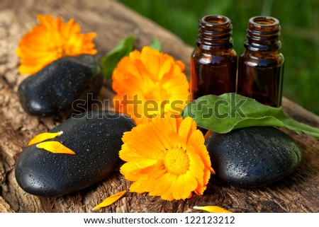 spa concept. essential oils of  marigolds