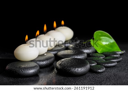 spa concept of row white candles and green leaf  Calla lily on black zen stones background with dew, closeup