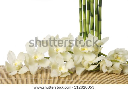 spa concept �set of thin bamboo grove with white bran orchid