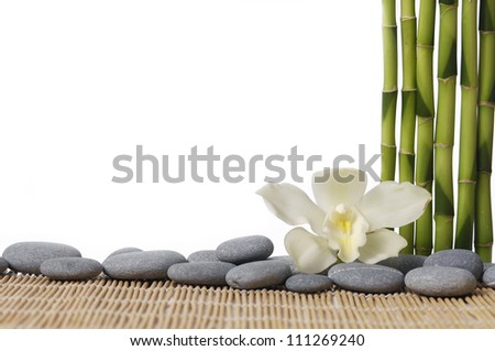 spa concept -thin bamboo grove with zen stones and orchid on mat