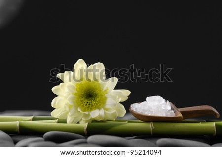 spa concept with herbal salt in spoon with bamboo grove on pebbles