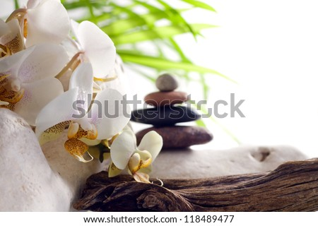 Spa concept with orchid and zen stones on white background