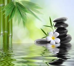 spa concept zen basalt stones
