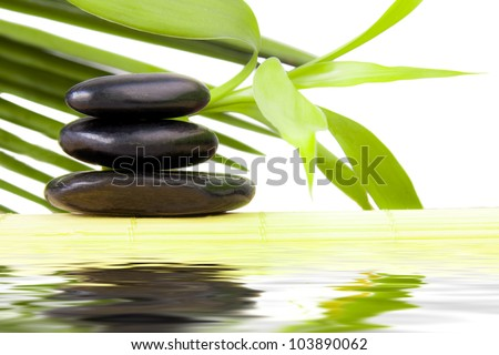 spa decor, flowers and water stones