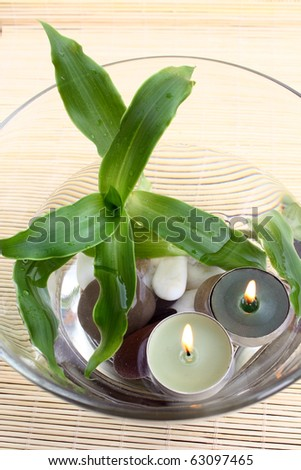 Spa Decoration: Top View Of Bowl With Water, Pebbles, Plant And ...