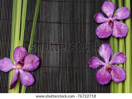 spa frame from bamboo grove, pink orchid on bamboo mat