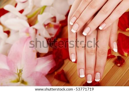 Spa hands over floral background