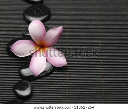 Spa life setting-frangipani with zen stones on mat