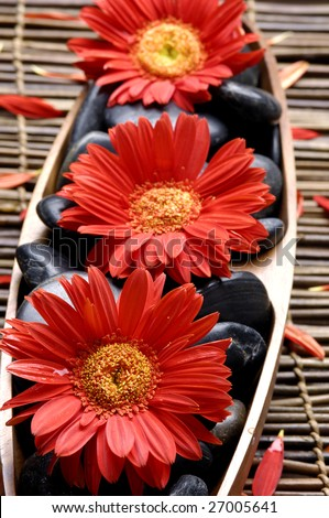 Spa life setting. red flower and stone on mat