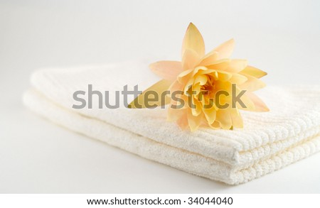 spa still life on white background