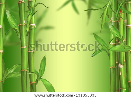 Spa still life with bamboo sprouts, free space for text #131855333
