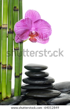 Spa still life with bamboo stem and orchid flowers on pebble stones stack in balance