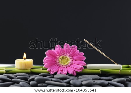 Spa still life with gerbera with candle and grove on pebbles