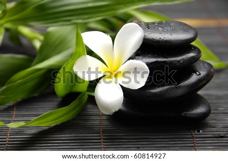 Spa still life with Stacked stone and bamboo with frangipani flower