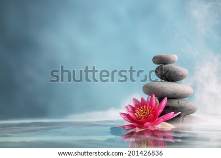 Spa still life with water lily and zen stone in a serenity pool #201426836