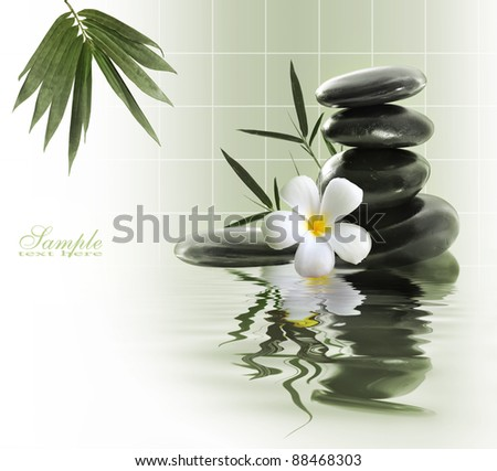 Spa still life with yellow flowers