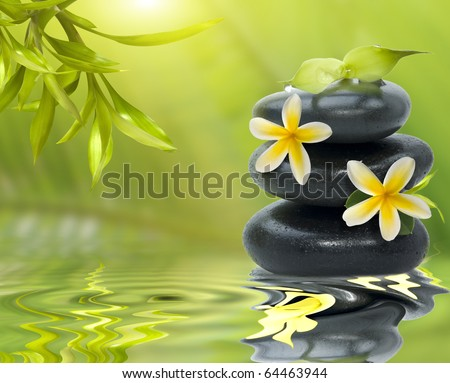 Spa still life, with yellow flowers on the black stones and bamboo leafs