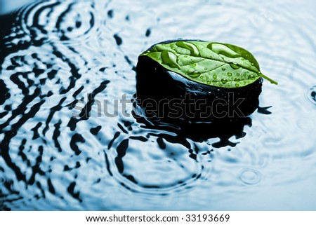 spa stone on leaf in water - stock photo