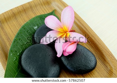 spa stone with flower and leaf on tray - stock photo