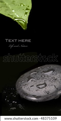 spa stone with water drop