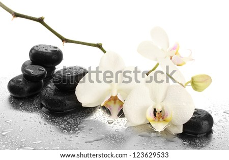 Spa stones and orchid flowers, isolated on white