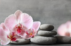 Spa stones and pink orchid on the grey background. Spa concept.