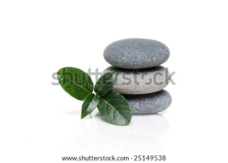 spa stones and plant