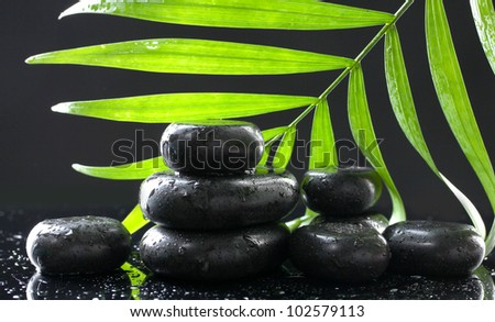 Spa stones with drops and green palm leaf on black background