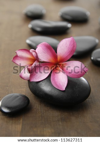 Spa stones with frangipani flower arranged on wooden board