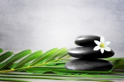 Spa stones with palm branch and white flower on light background. Space for text.