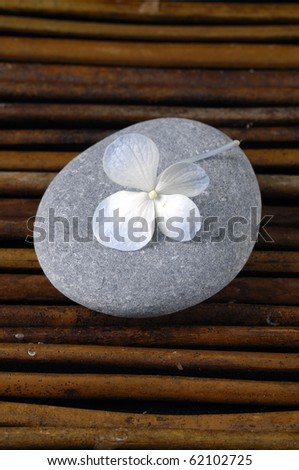 Spa stones with white hydrangea flower