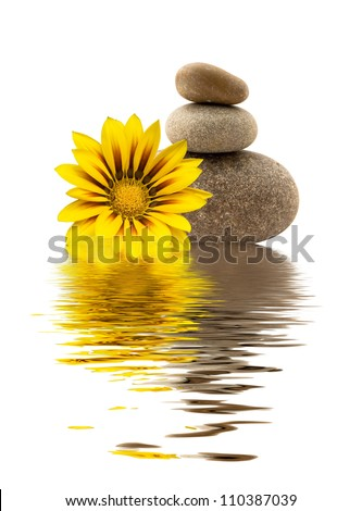 spa stones with yellow flower and a reflection in water