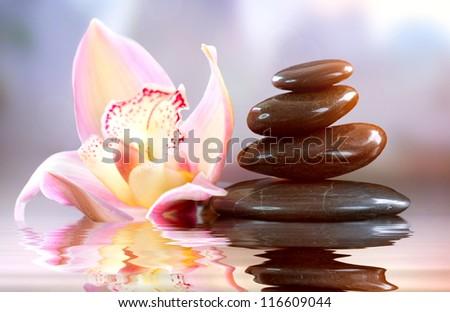 Spa Zen Stones. Harmony. Spa Treatments