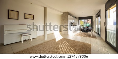 Spacious and bright modern living room. Nobody inside