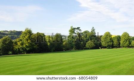 Spacious Green Park #68054809