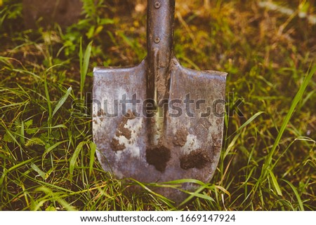 Photo of  spade on the grass. Close-up photo of a shovel on grass. spade close up photo. A shovel stands rooted to the ground in the garden. vintage photo processing