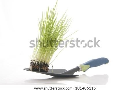 Spadeful of dirt  Green grass with garden tool isolated against a white background