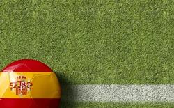 Spain Ball in a Soccer Field