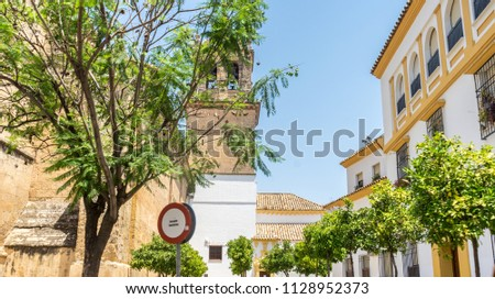 Spain, Cordoba, Europe,  PLANTS AND TREES BY BUILDING AGAINST CLEAR SKY #1128952373