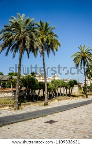 Spain, Seville, Europe,  PALM TREES BY SWIMMING POOL AGAINST SKY #1109338631