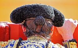 Spanish bullfighter closeup