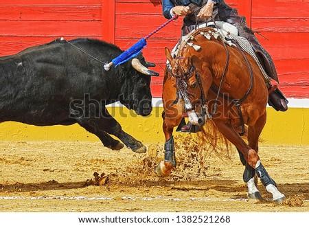 Spanish Bullfighting horse against fierce bull #1382521268
