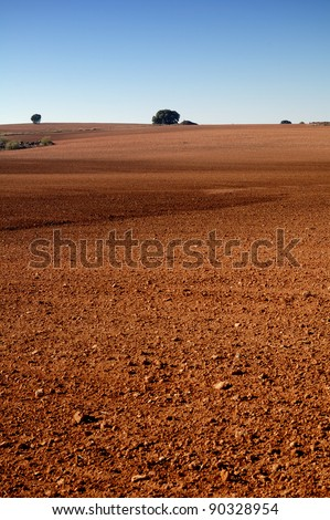 Spanish field in winter with soil detail