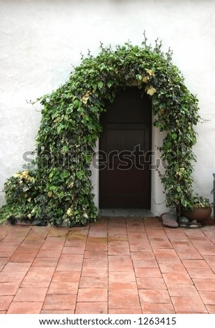Spanish Mission Style Door With Ivy Background for Portraits