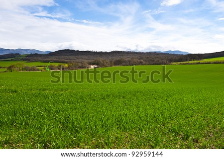 Spanish Spring Fields on the Background of Snowy Peaks of the Pyrenees