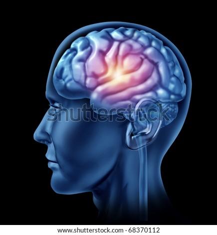 spark of genius brain head lobes cortex intelligence creativity strategy planning