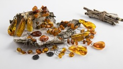 Sparkling unique vintage  jewelry made of natural Baltic amber in silver in the form of earrings, pendant, necklace lie on white old birch bark.