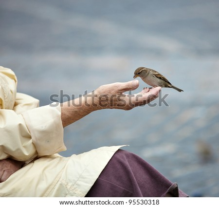 sparrow on the hand of old woman