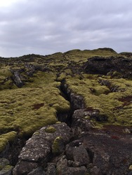 Sparse landscape with deep rocky fissure on lava field with volcanic rocks covered by green moss and lichens near Grindavik, Reykjanes peninsula, Iceland on cloudy day in winter season.
