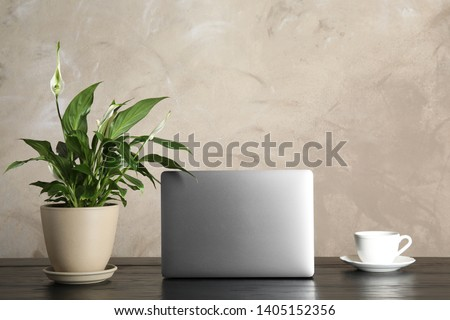 Spathiphyllum plant, laptop and cup on table against color background, space for text. Home decor #1405152356